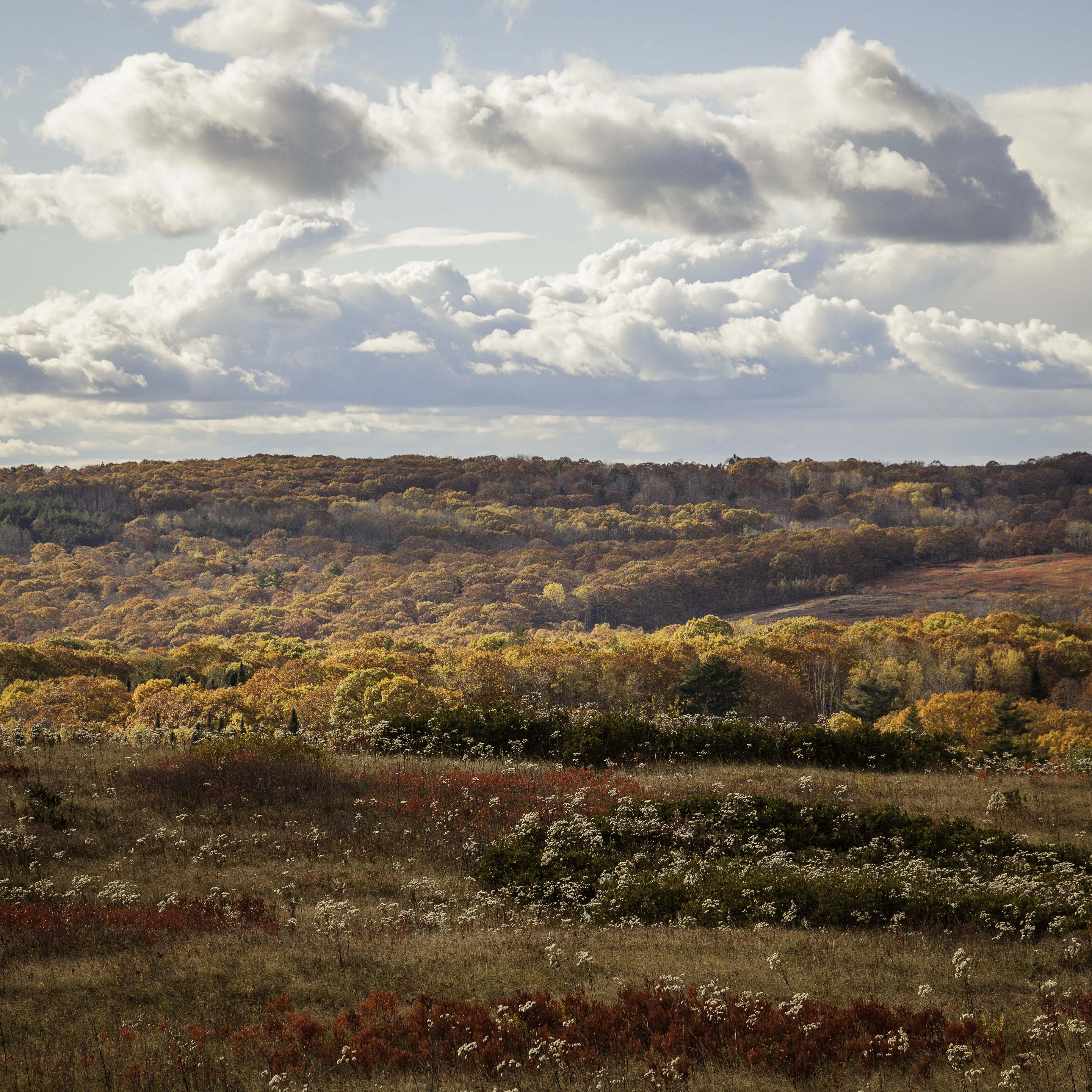 Heaven & Earth- Beech Hill & Dodge Mountain
