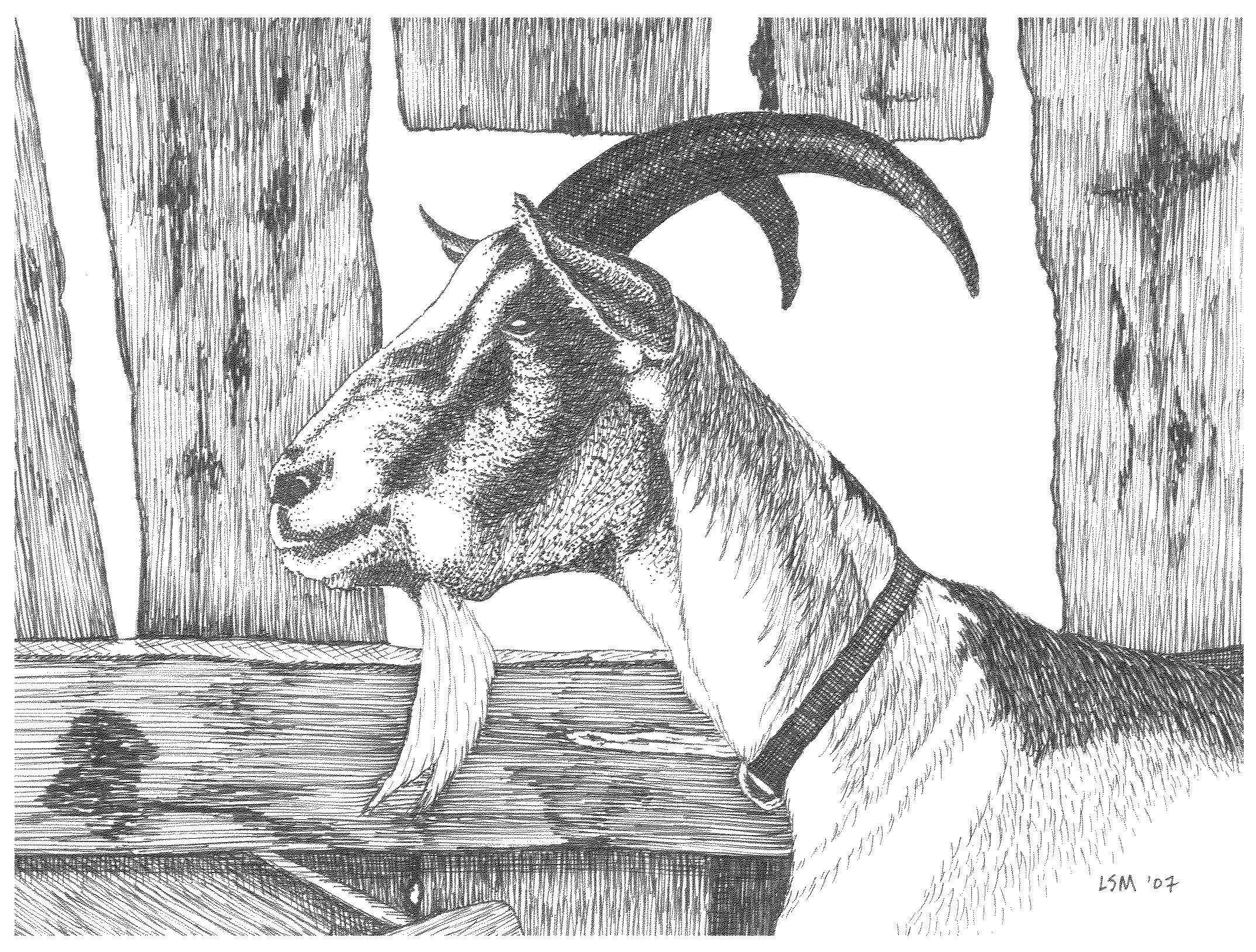 Billie Goat Gruff