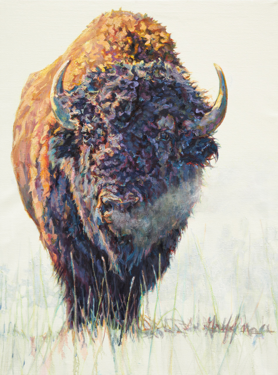 A Bison Painting By Artist Patricia Griffin Hangs In Gallery Wild In Downtown Jackson Hole Wyoming