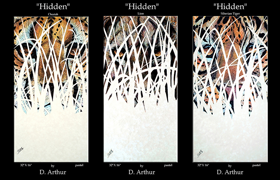 Hidden Series