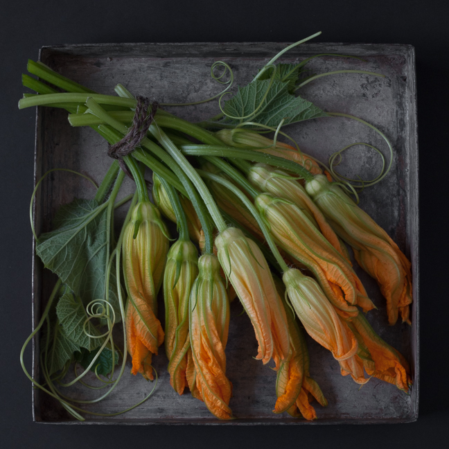 Squash Blossoms - The Tray Series