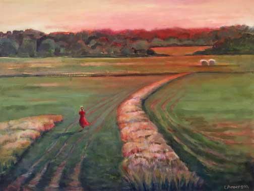Evening Field, Brooksville Maine