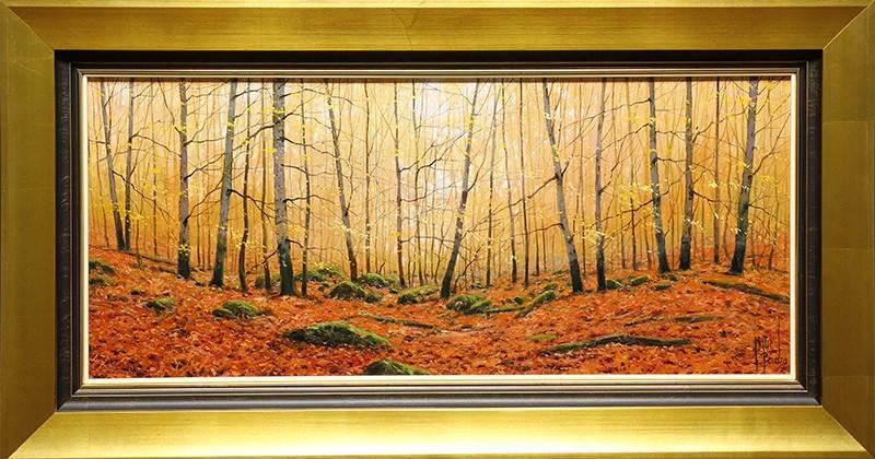 Hayedo Forest