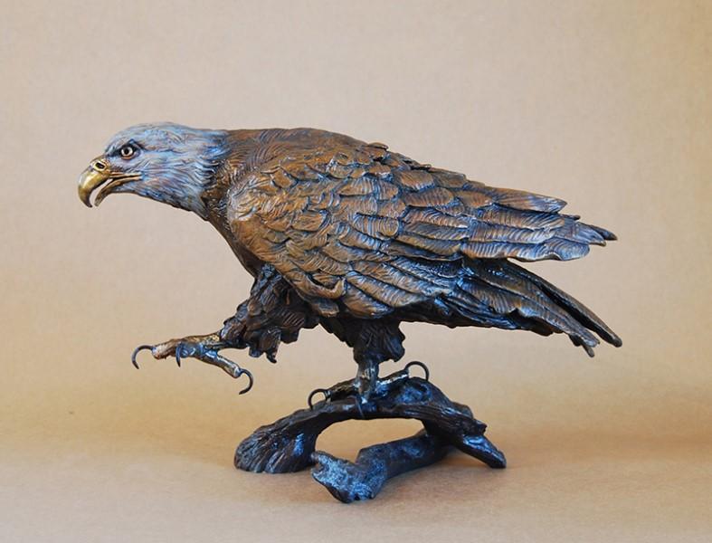 Stalking Eagle