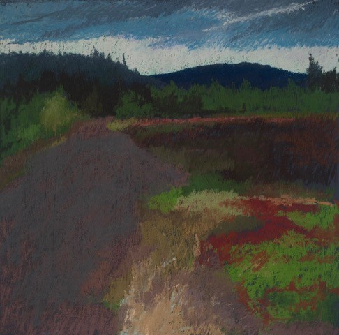Lay of the Land Reconsidered # 8, Back Road Blueberry Filed, Nova Scotia