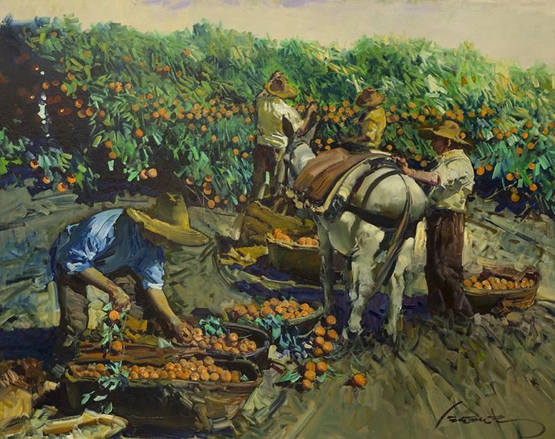 Naranjos La Recollida - Valencia Espana