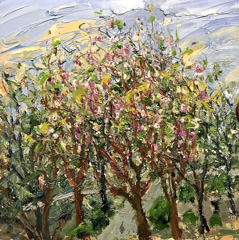 Almond Trees in Mallorca
