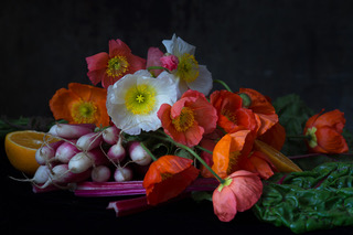 Poppies with Radishes