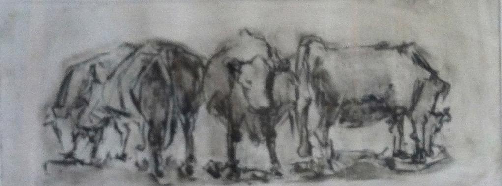 Cow Suite II