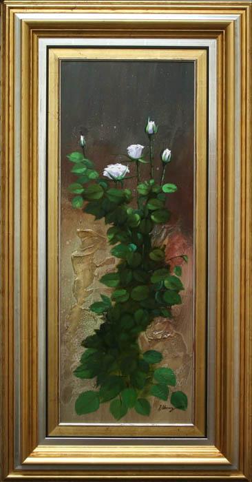 Roses- SA DE244 -DP