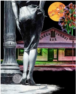 Key West Noir- The Green Parrot