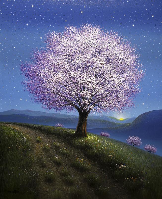 Celestial Skies