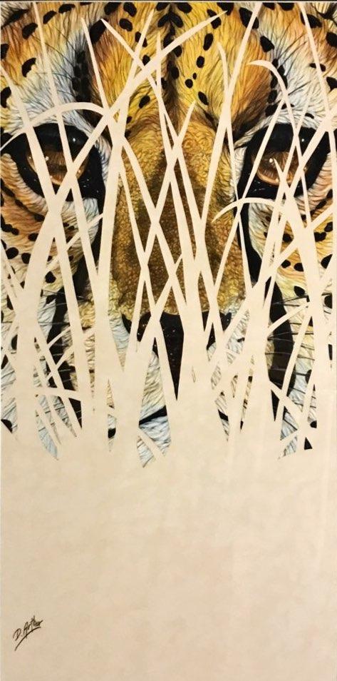 Hidden Series Cheetah