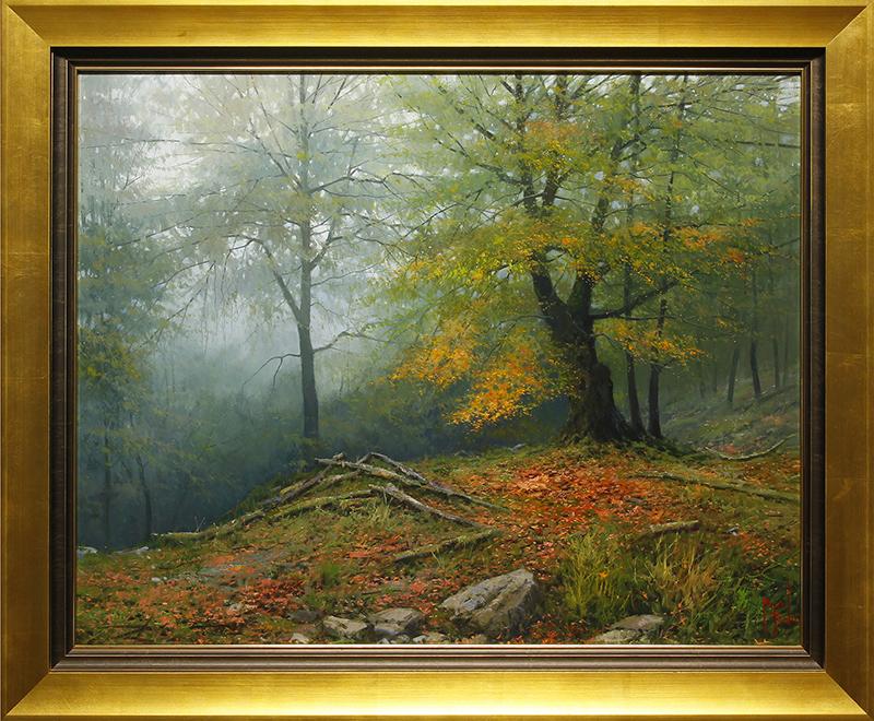 Dia Gris en el bosque Pelono - Picos de Europa (Grey Day in the Pelono Forest- Peaks of Europe)