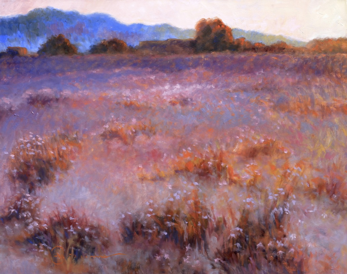 Purple Aster Meadow