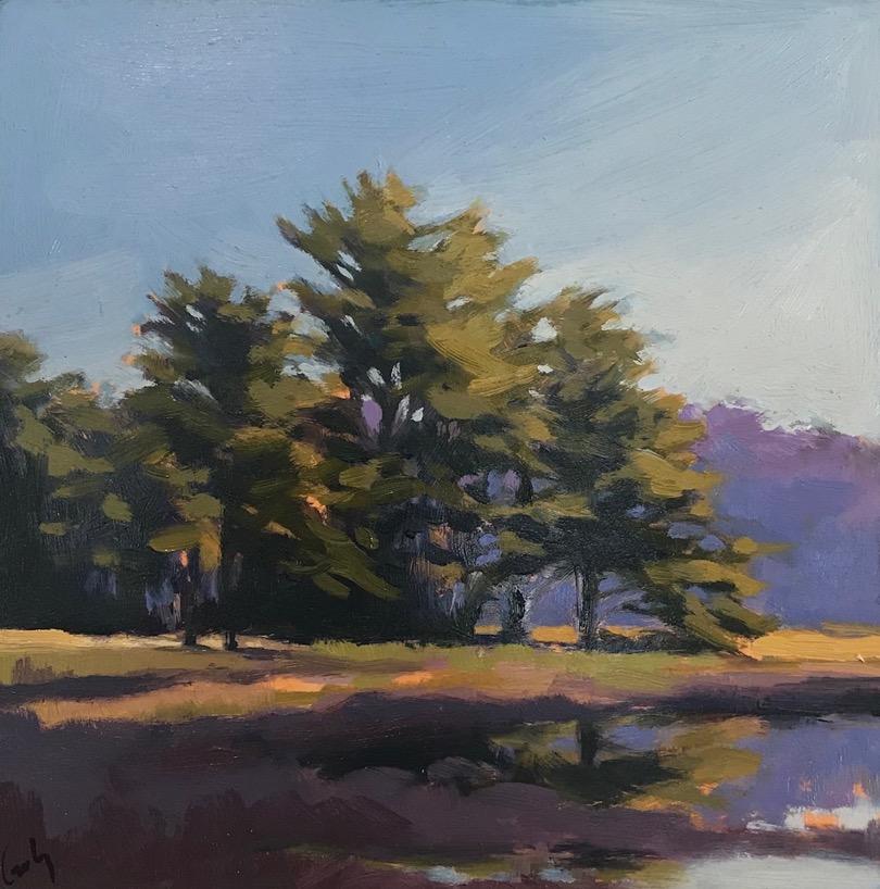 Maine Study IV