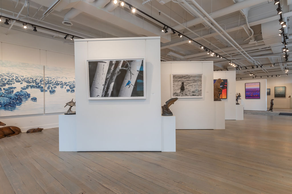 A Inside View Of Gallery Wild With Select Wildlife Art On Display