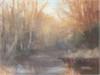 Creek Field Study