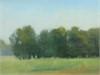 Treeline Field Study