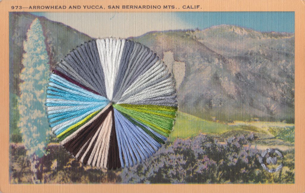 Arrowhead and Yucca by Natalie Ciccoricco