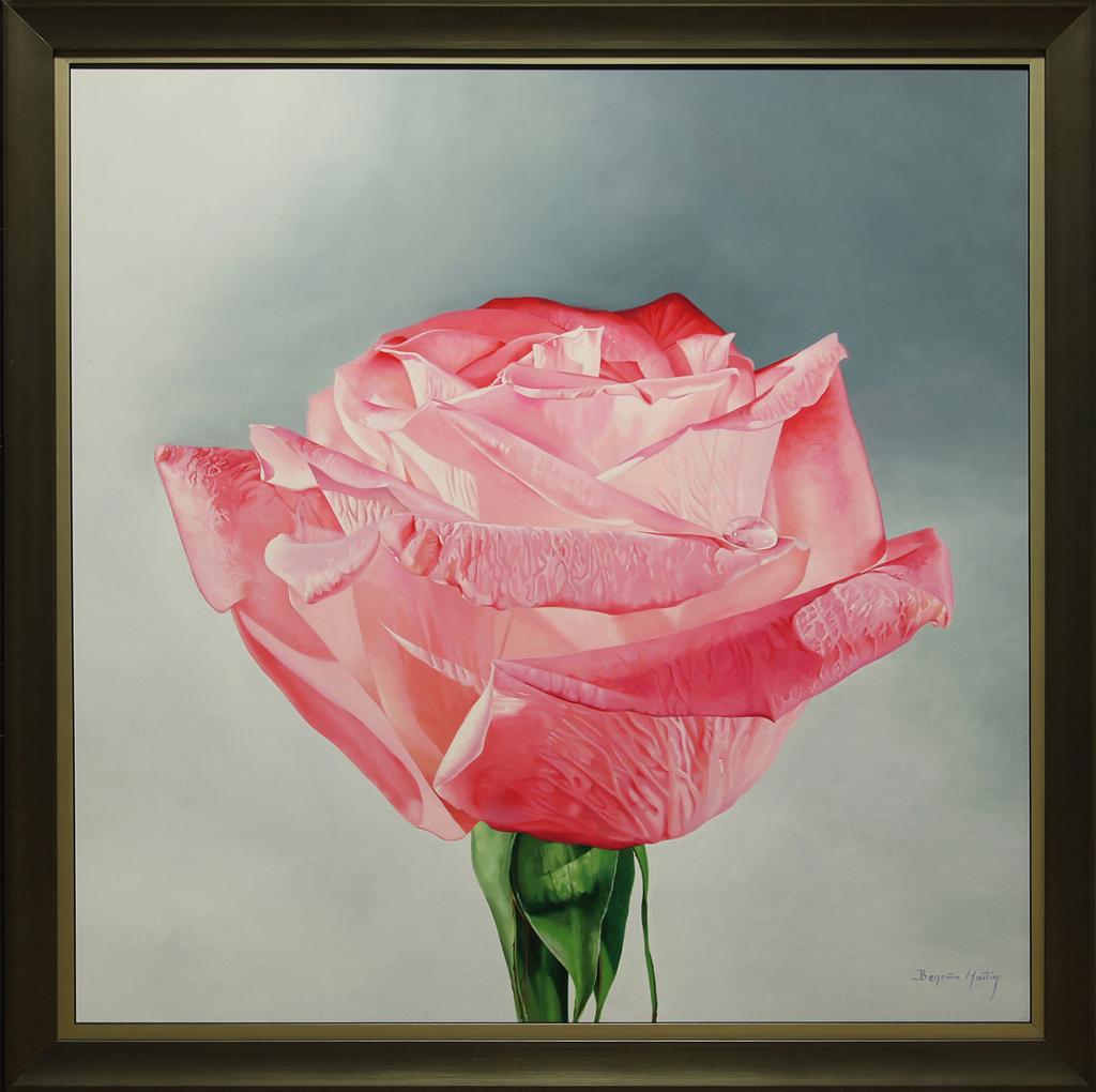 Pink Surprise! by Begona Martin