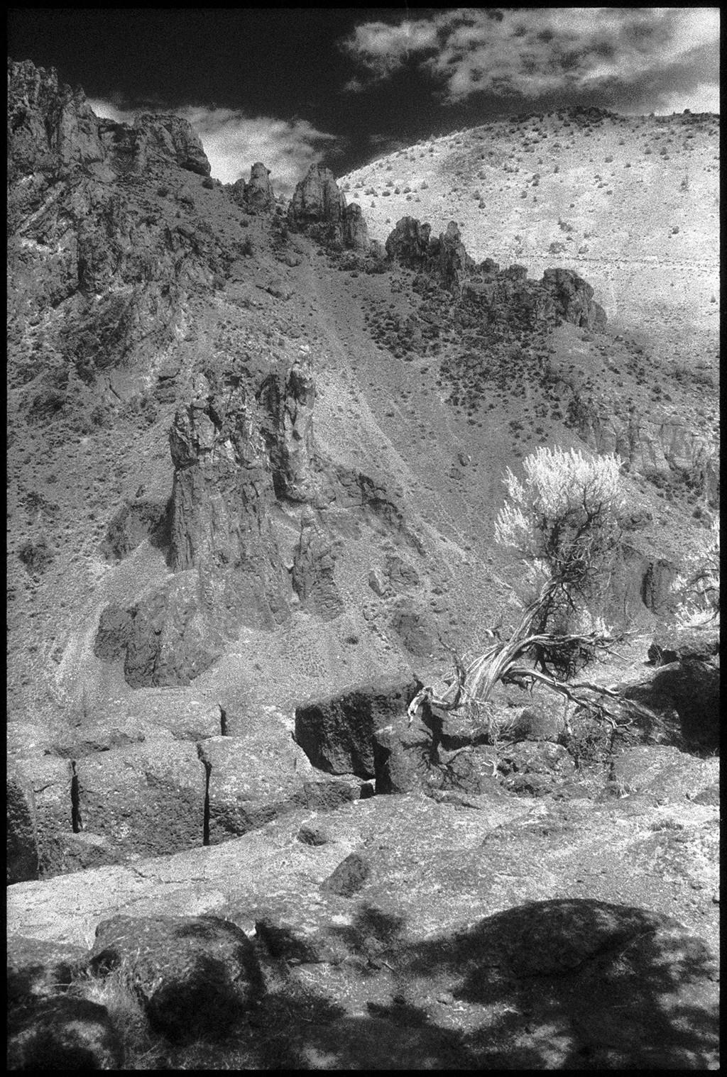 Smith Rock I by Edward C. Alfano