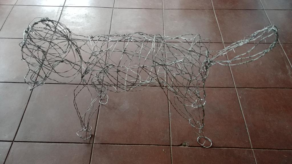 Casey the Poodle by Derek Hoehn