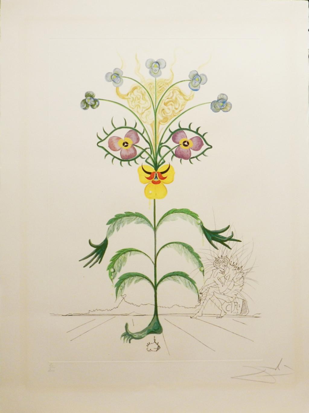 Flora Dalinae Viola Cogitans by Salvador Dali (1904 - 1989)