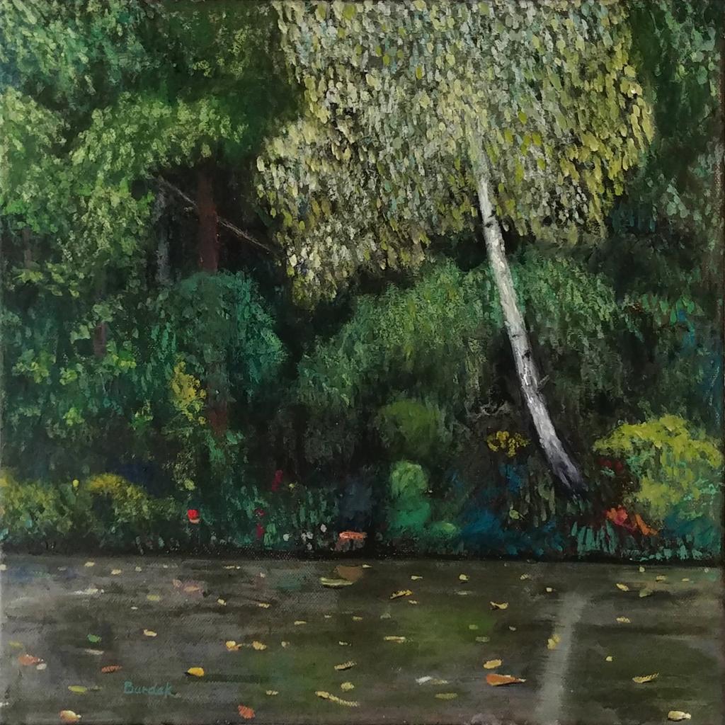 Birch Tree by a Lake by Karl Burdak
