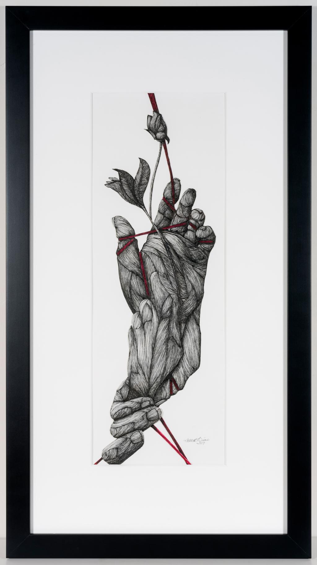 Novum by Katherine Filice