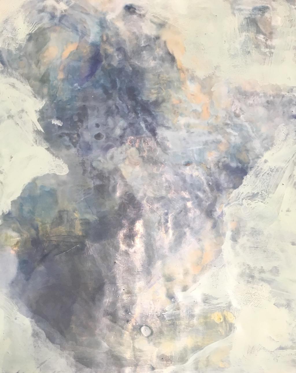 Amoeba: Life Begins by Shelley Fleishman