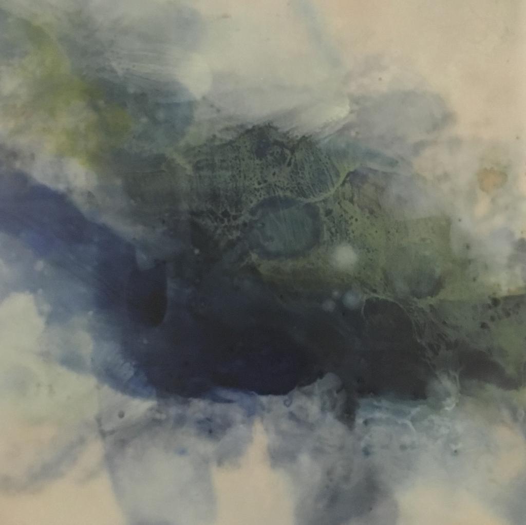 Collective 20 by Shelley Fleishman