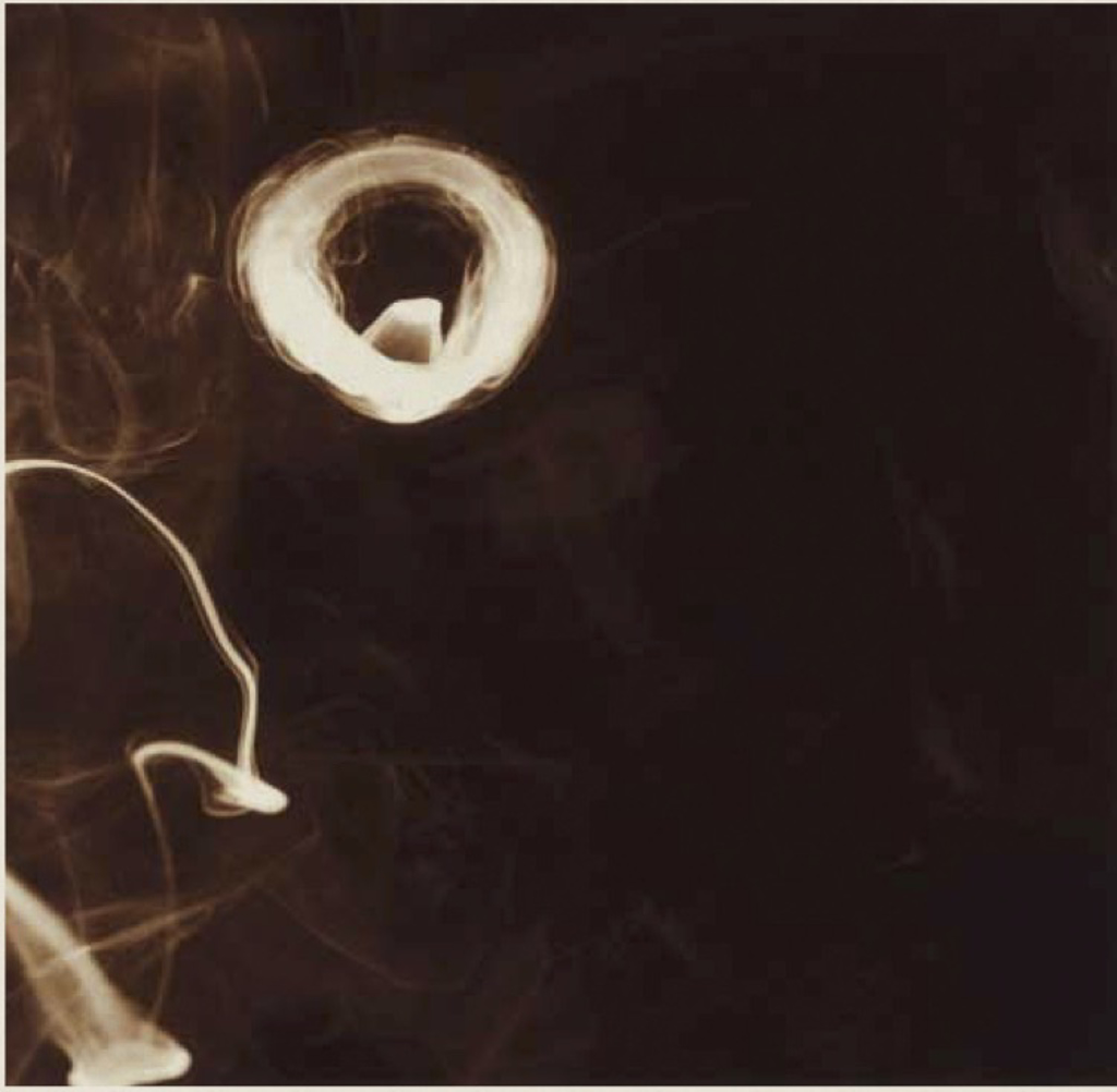 Smoke Rings, June 6, 2001 by Donald Sultan
