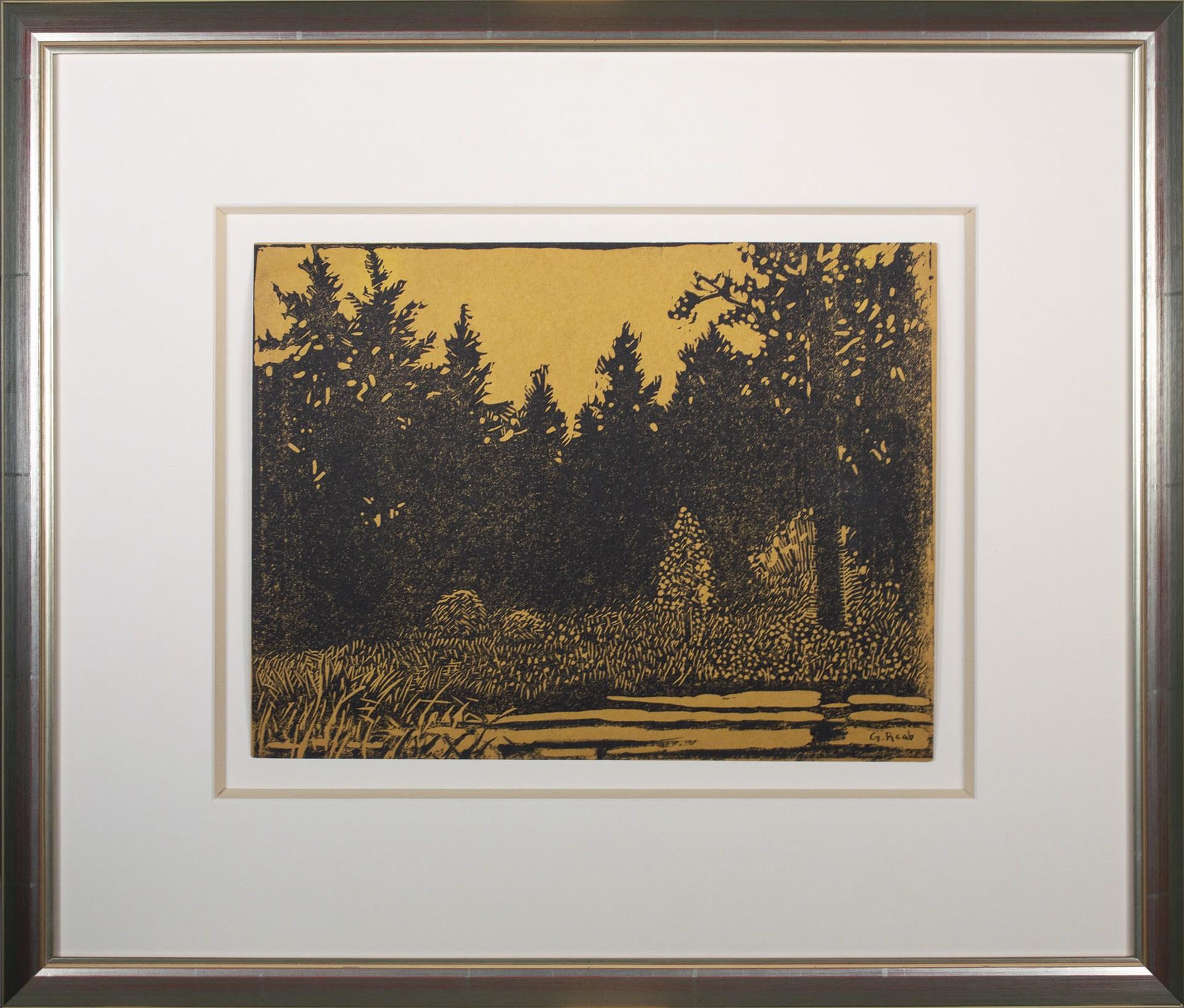 Forest Primeval by George Raab