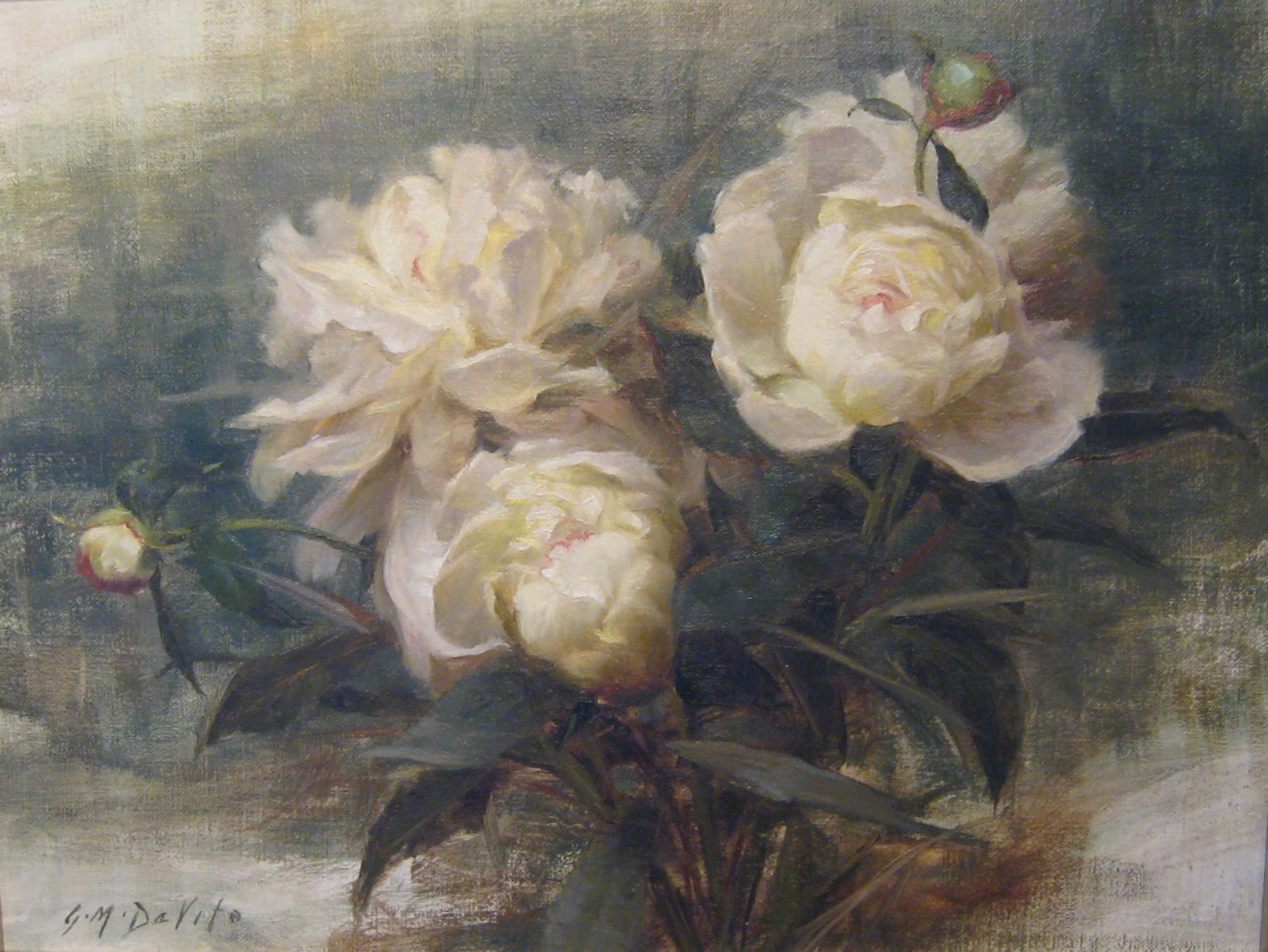 Peonies by GRACE DeVITO