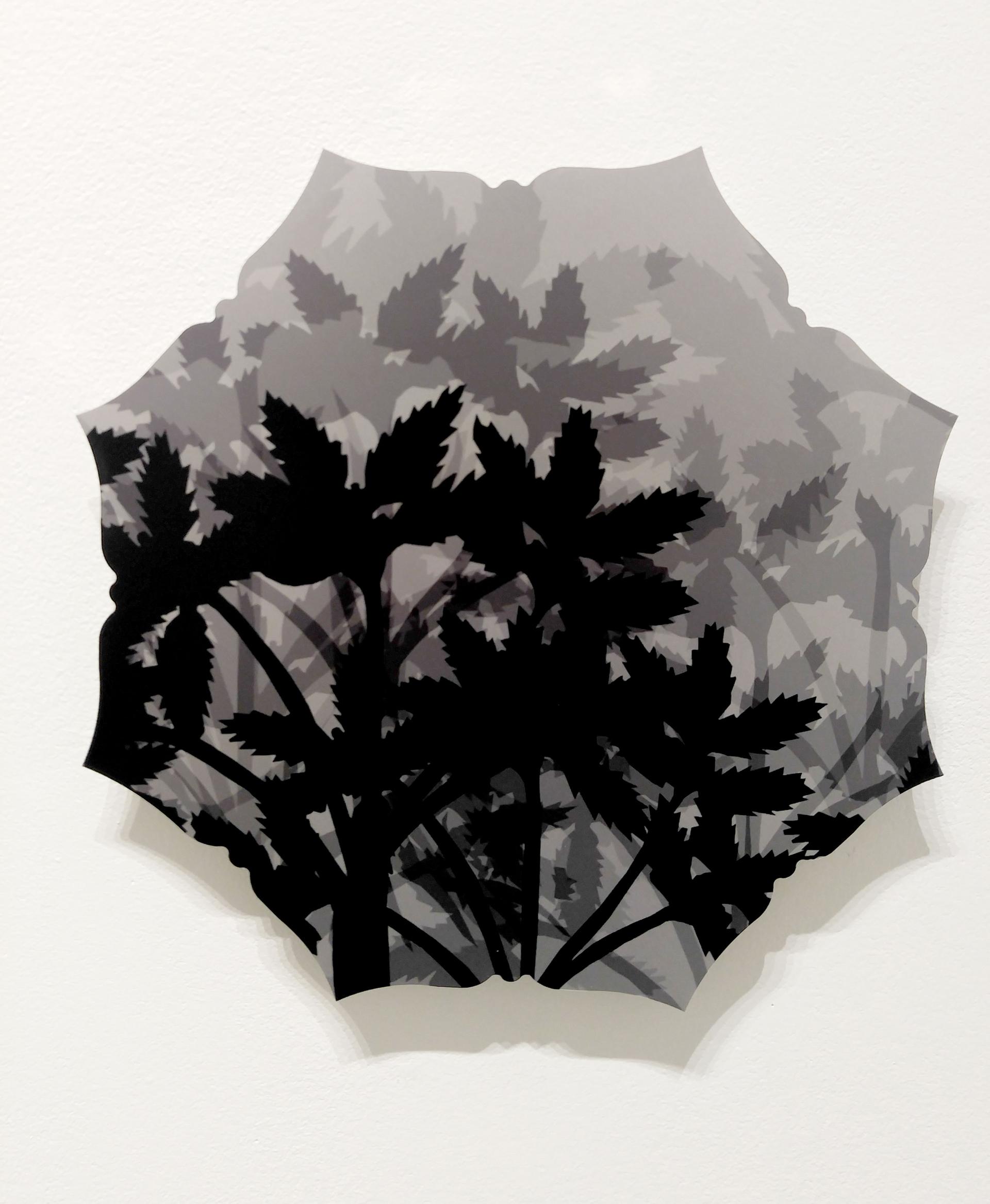 Cinquefoil by Pantea Karimi