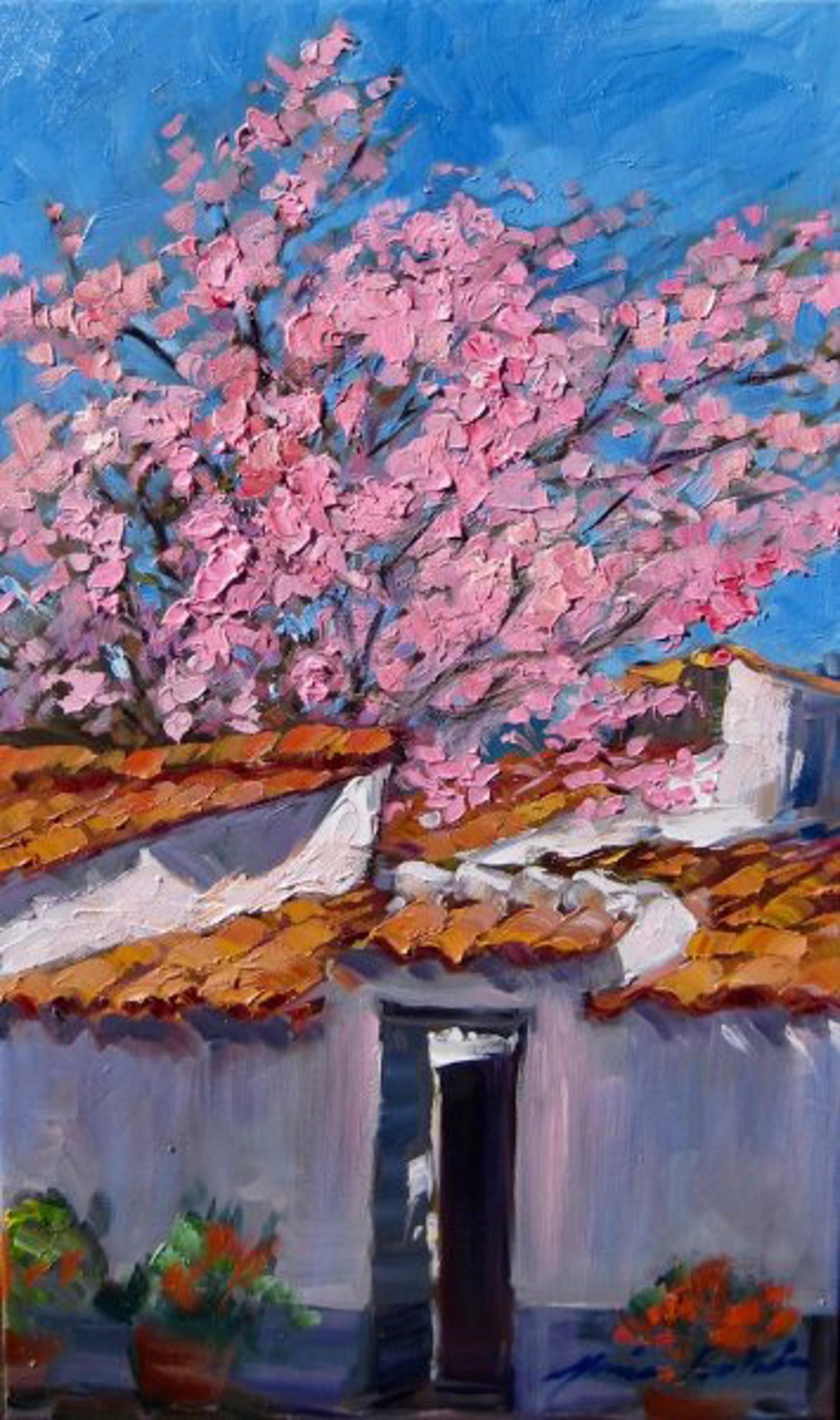 Spanish Almond Tree Patio by Maria Bertrán