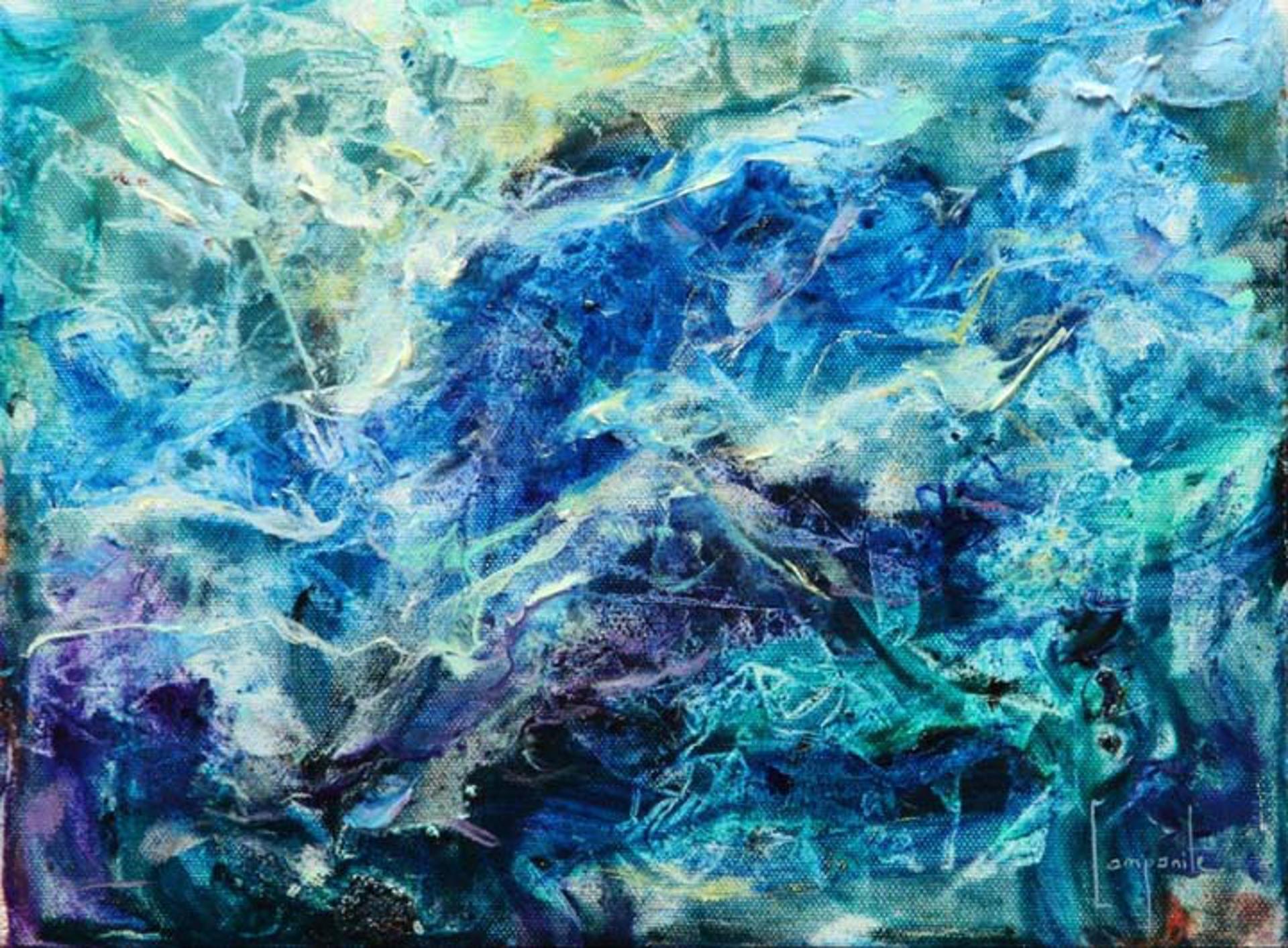 Dolphin Bay by Dario Campanile