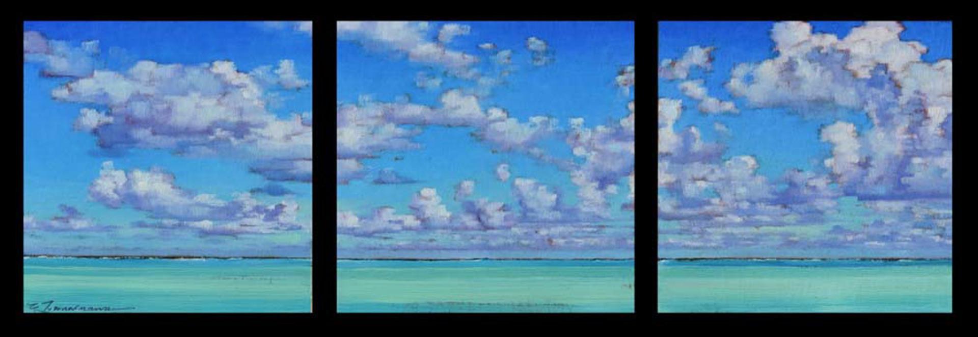 Tropical Cloud Sky (T) by Caroline Zimmermann