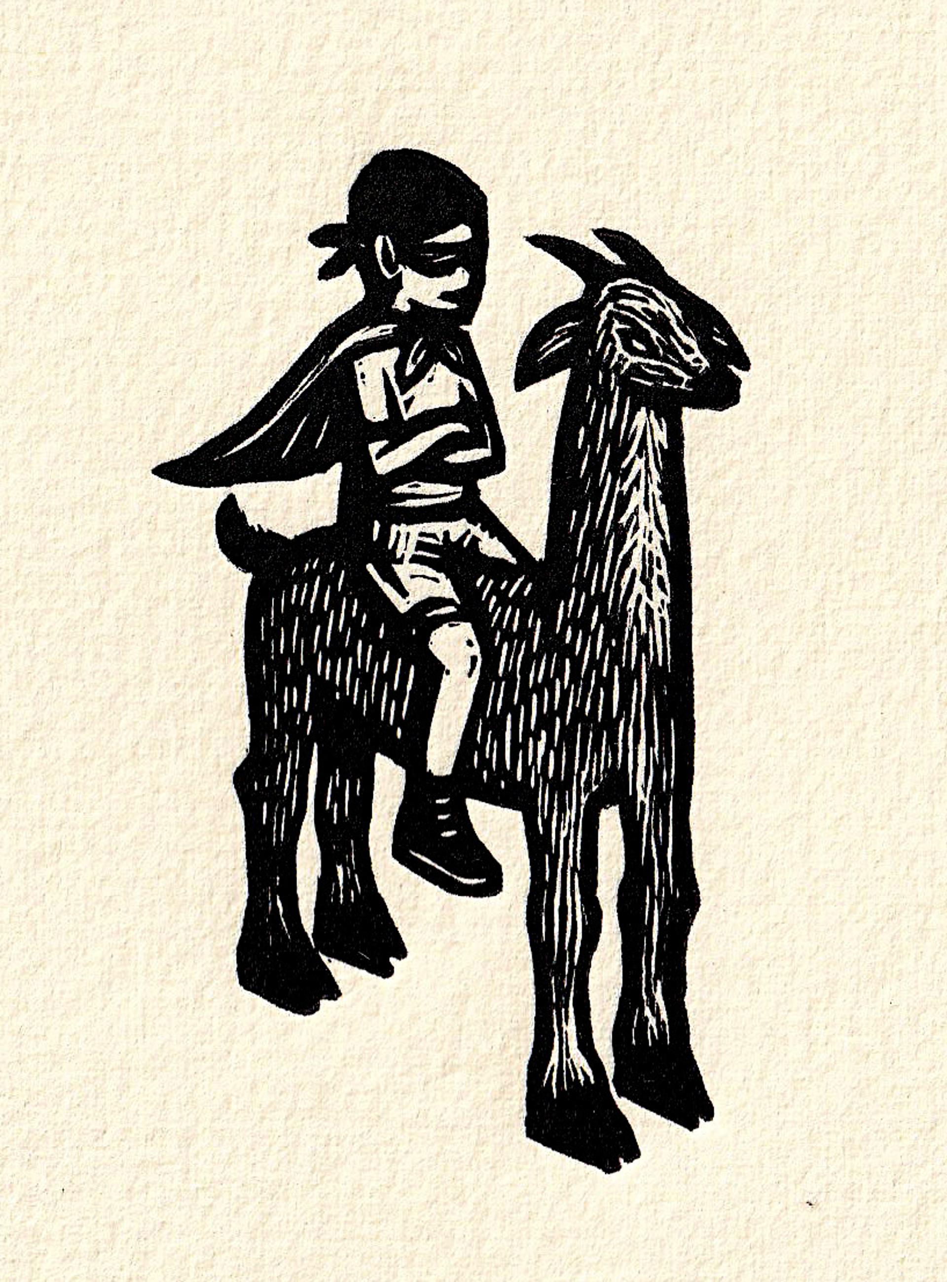 Untitled (Llama) (Framed) by Alberto Cruz