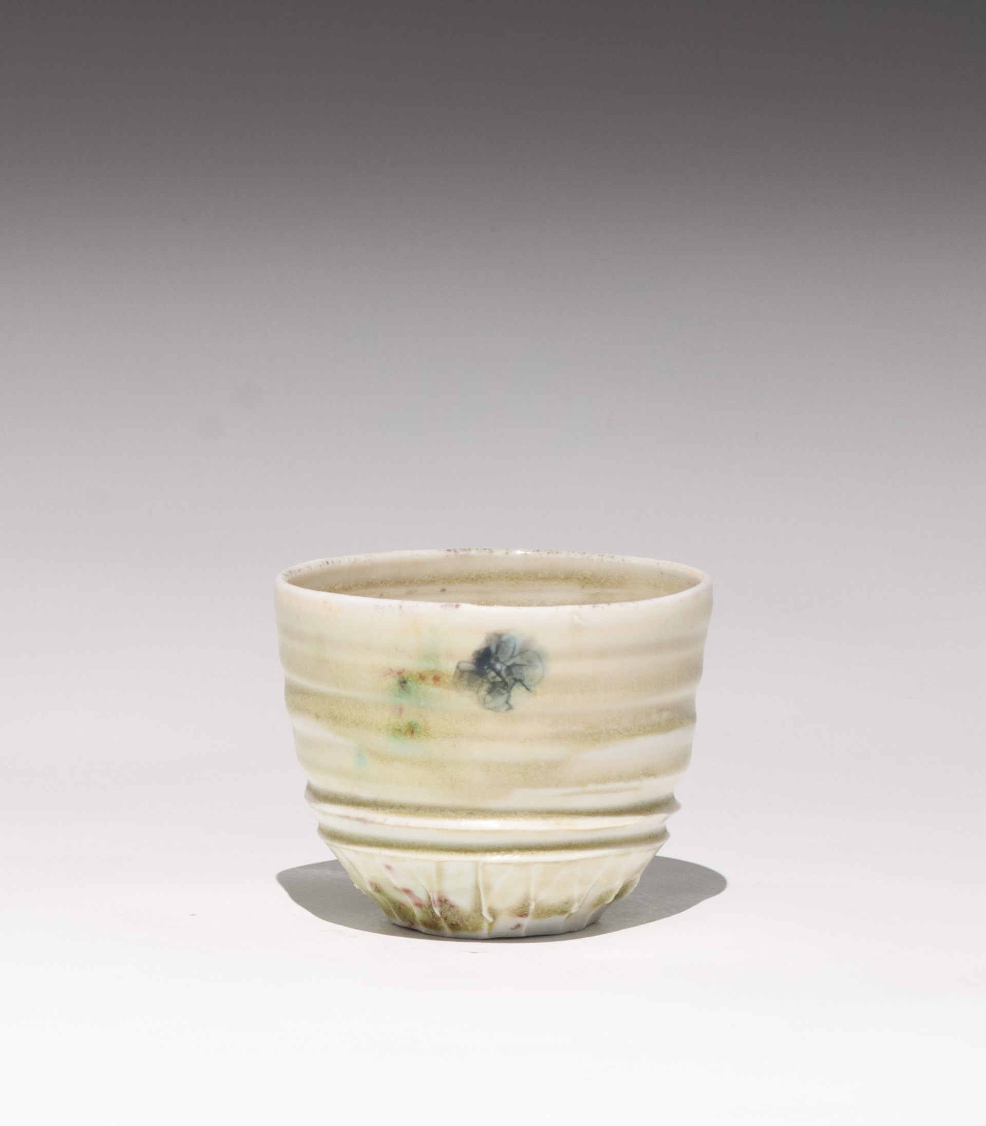 Insect Tea Bowl 3 by Caroline Bottom Anderson