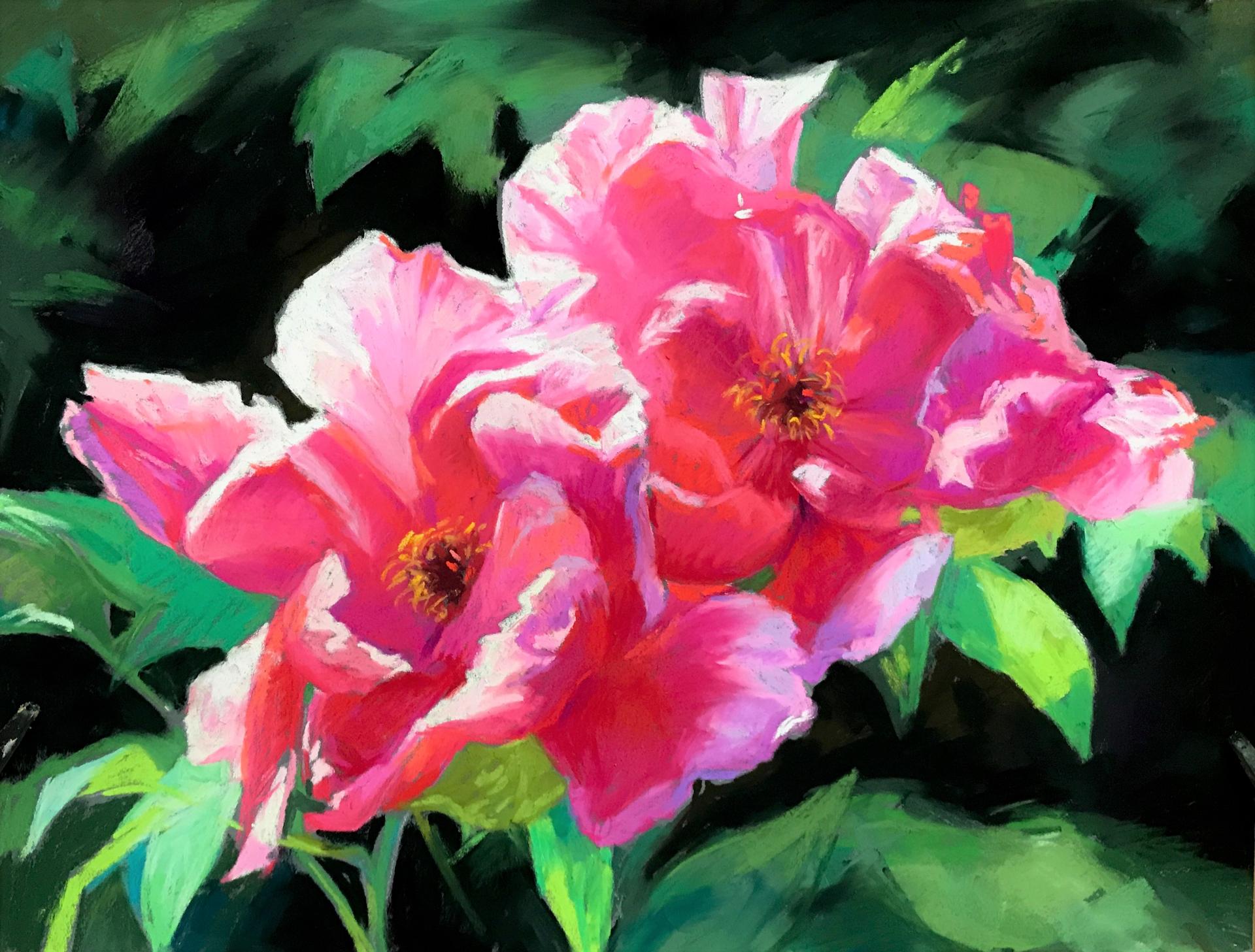 Pink Splendor by Lisa Gleim