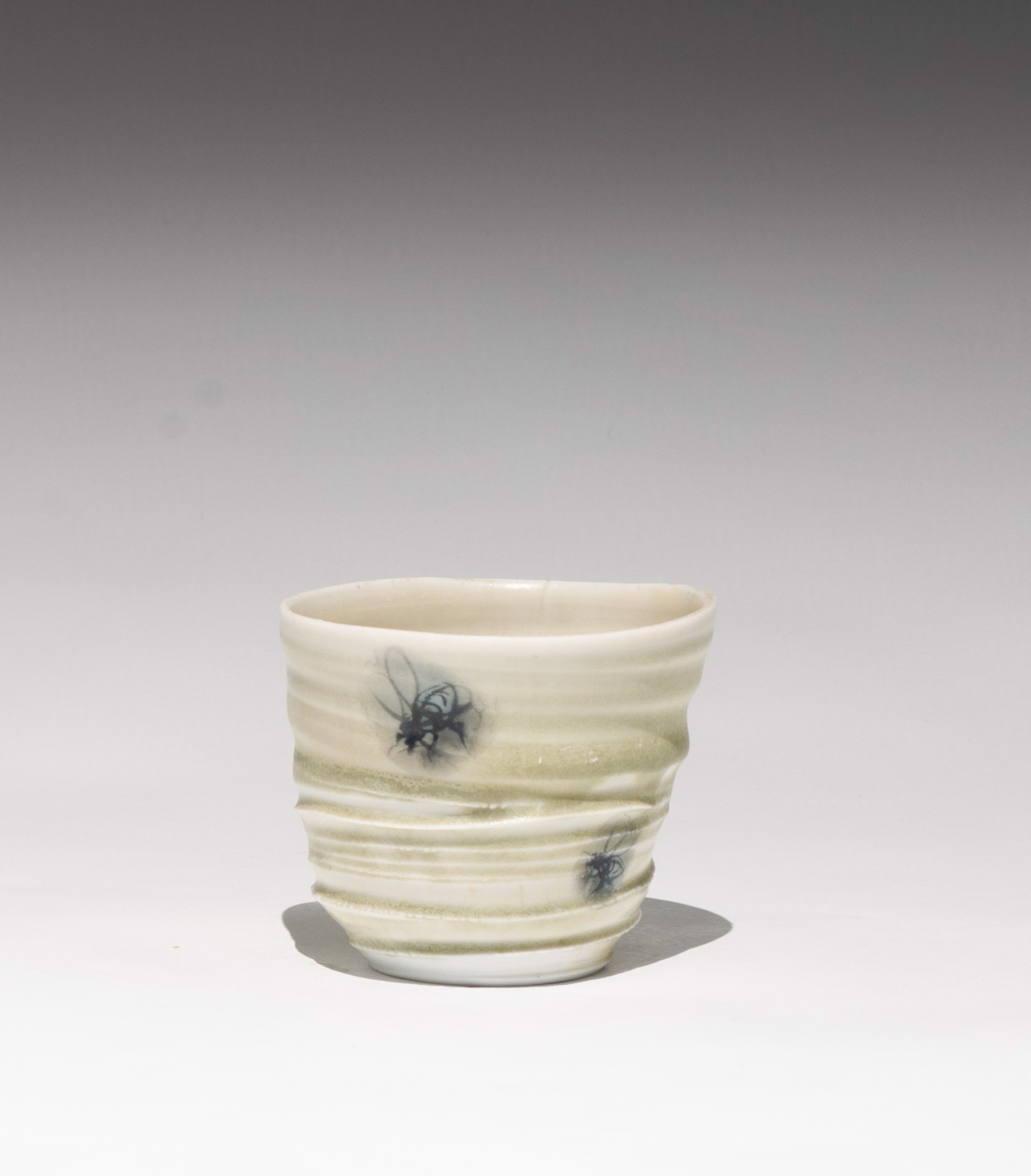 Insect Tea Bowl 5 by Caroline Bottom Anderson