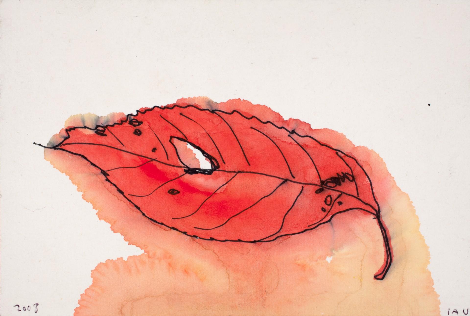 kyoto leaf by Alan Lau