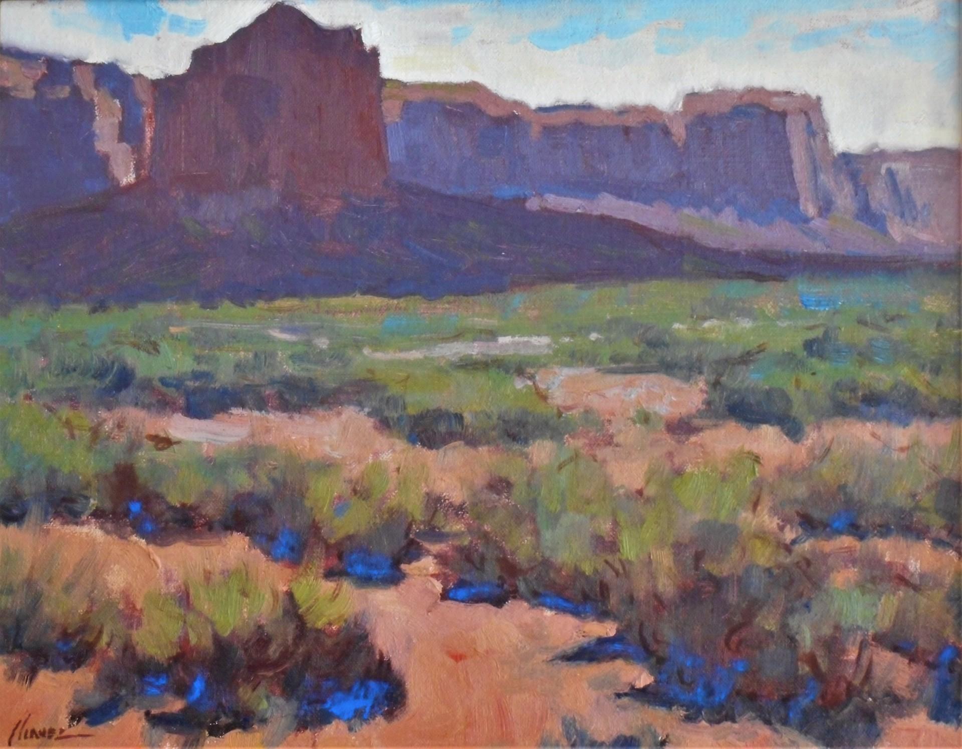 Desert Vista by Lorenzo Chavez
