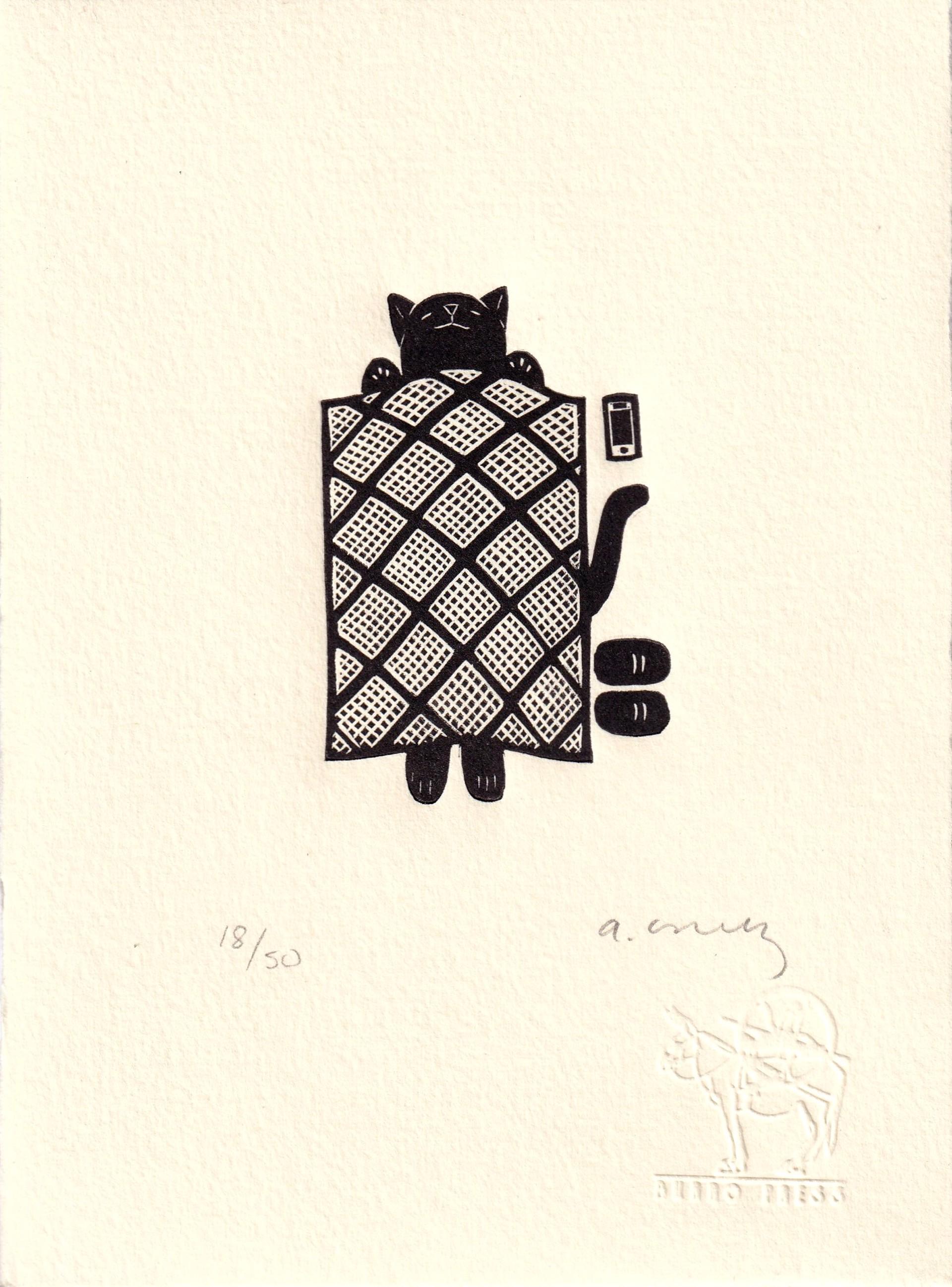 Untitled (Gato con Manta Celular) by Alberto Cruz