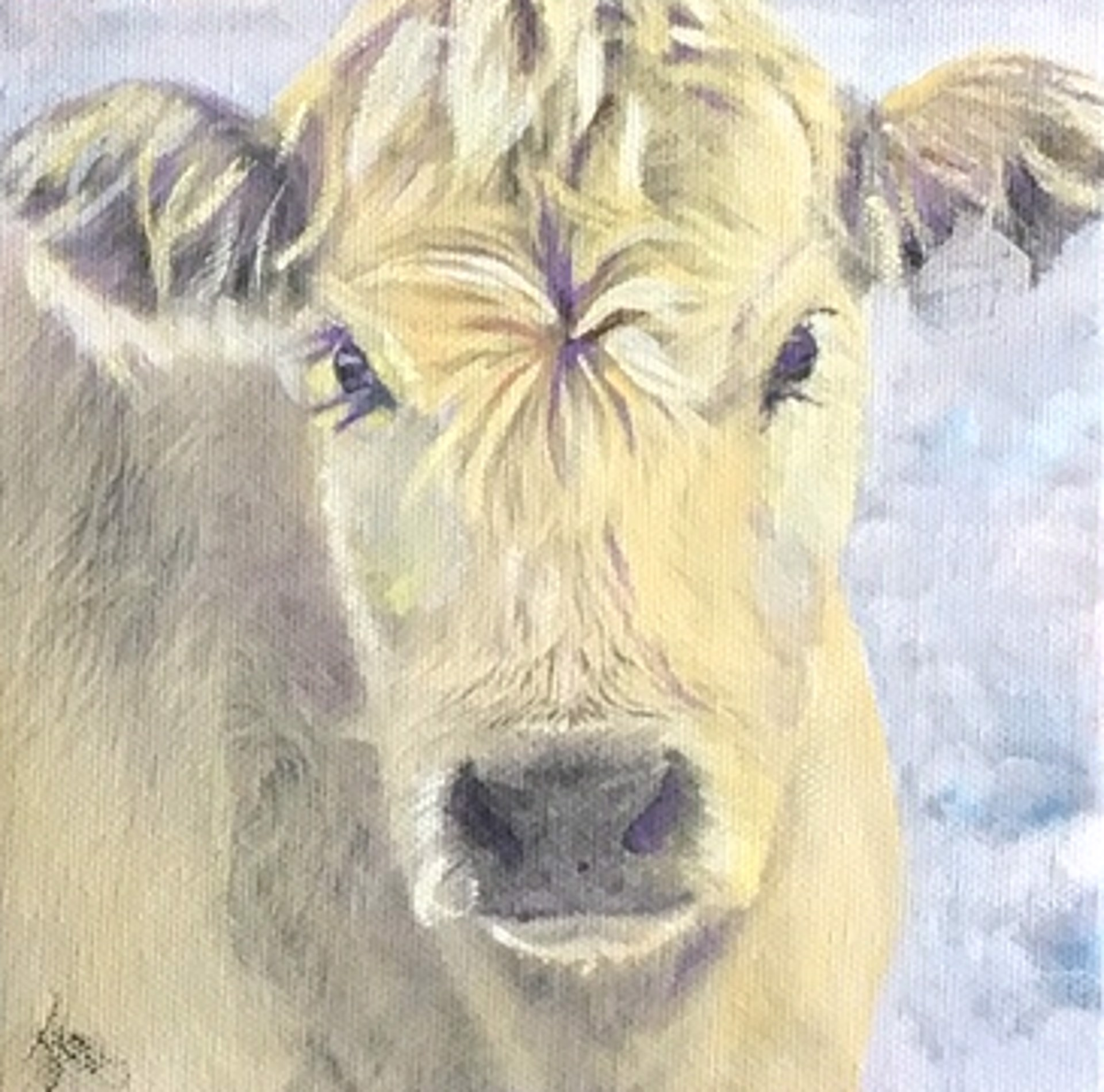 Yellow Calf Face 1902 by Jenny Gummersall