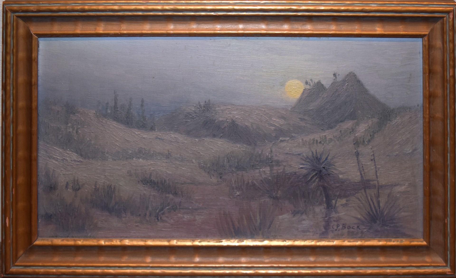 Desert Solitude by Charles Peter Bock
