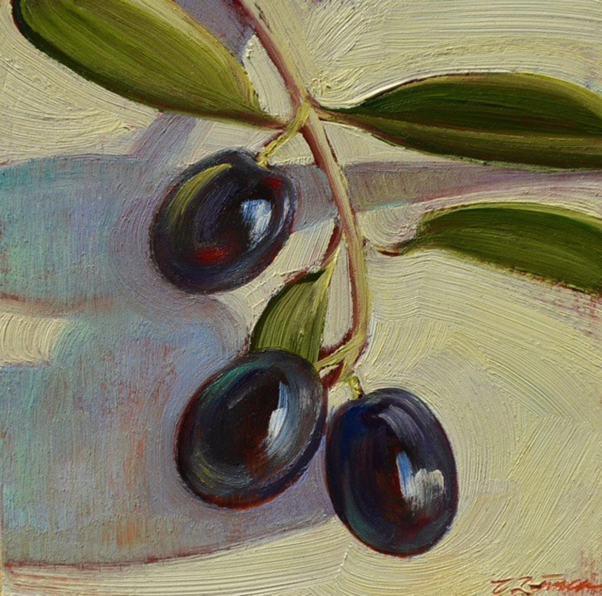 Tuscan Olives 1 by Caroline Zimmermann