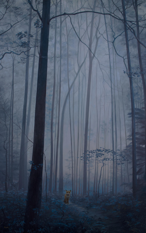 In the Woods by Dana Hawk